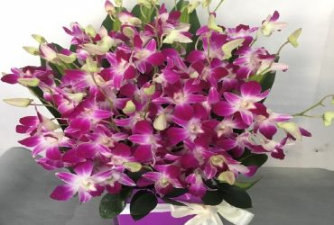 7 days flowers delivery Dubai