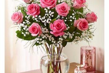 Office-flowers